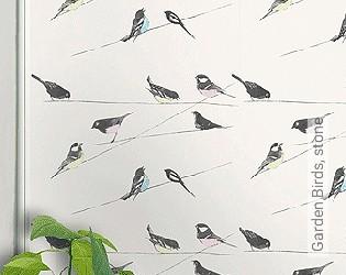 Bild Tapete - Garden Birds, stone