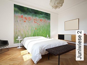 Preis:343,00 EUR - Kollektion(en): - FotoTapete