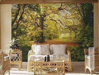 Tapete: Herbstwald