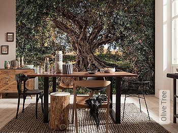 Tapete  - FotoTapete Olive Tree