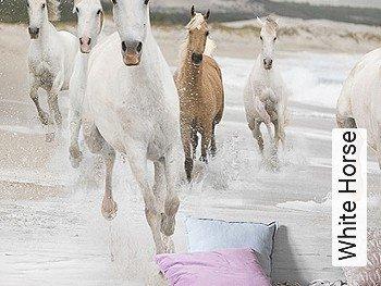 Tapeten  - FotoTapete White Horse