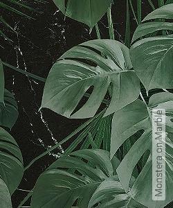 Preis:109,90 EUR - Kollektion(en): - Exotische Tapeten