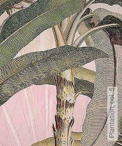 Preis:129,90 EUR - Kollektion(en): - Exotische Tapeten