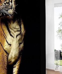 Preis:409,30 EUR - Kollektion(en): - FotoTapete - EN15102/EN13501.B-s1 d0 - FotoTapete - Animal Print - Schwarz