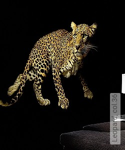 Preis:409,30 EUR - Kollektion(en): - FotoTapete - EN15102/EN13501.B-s1 d0 - Gute Lichtbeständigkeit - Animal Print - Schwarz