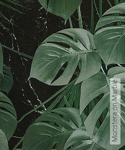 Preis:109,90 EUR - Kollektion(en): - FotoTapete - Exotische Tapeten