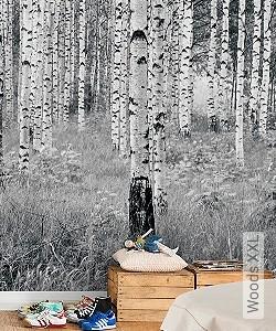 Preis:239,00 EUR - Kollektion(en): - FotoTapete - Schwarz und Weiß