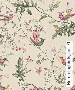 Tapete  - Exotische Tapeten Hummingbirds, 71