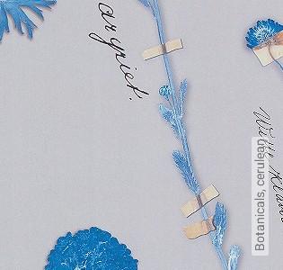 Bild Tapete - Botanicals, cerulean