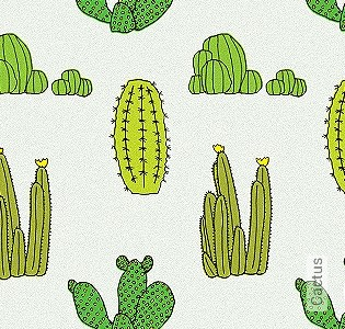 Bild Tapete - Cactus