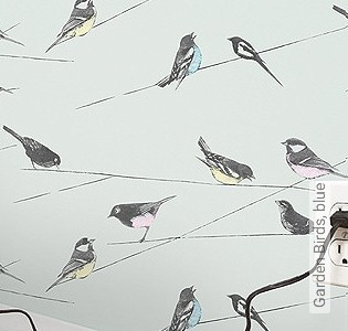Bild Tapete - Garden Birds, blue