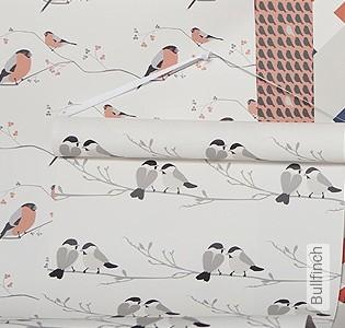 Bild Tapete - Bullfinch