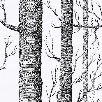 Preis:94,99 EUR - Kollektion(en): - Bäume