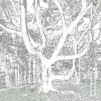 Preis:438,00 EUR - Kollektion(en): - Braun - Bäume - FotoTapete - EN15102/EN13501.B-s1 d0 - Blätter - Creme