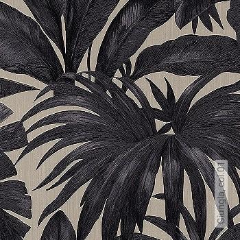 Preis:79,95 EUR - Kollektion(en): - EN15102/EN13501.B-s1 d0 - Gute Lichtbeständigkeit - Schwarz - Florale Muster