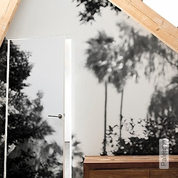 Preis:644,00 EUR - Kollektion(en): - FotoTapete - EN15102/EN13501.B-s1 d0 - Schwarz - Vliestapeten - Moderne Tapeten