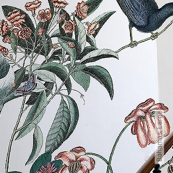 Preis:644,00 EUR - Kollektion(en): - FotoTapete - EN15102/EN13501.B-s1 d0 - Tapeten mit Vogelmotiven - Florale Muster
