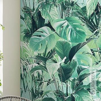 Preis:99,90 EUR - Kollektion(en): - FotoTapete - Florale Muster