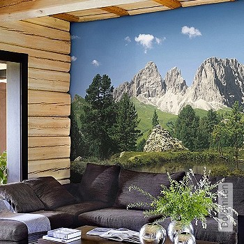 Preis:85,63 EUR - Kollektion(en): - FotoTapete - Gras