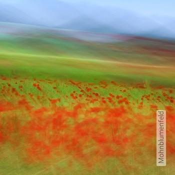Preis:343,00 EUR - Kollektion(en): - FotoTapete - Gras