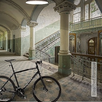 Preis:349,00 EUR - Kollektion(en): - FotoTapete - Hellgrün