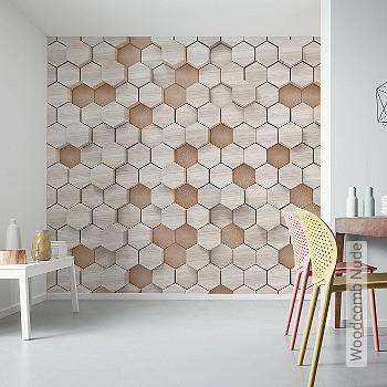 Preis:189,90 EUR - Kollektion(en): - FotoTapete - Holzdesign / Holzoptik