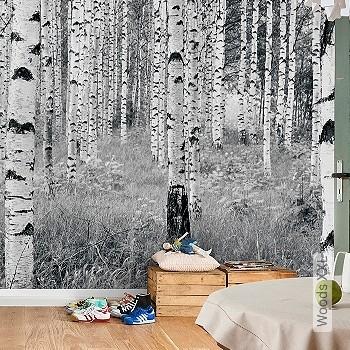Preis:239,00 EUR - Kollektion(en): - FotoTapete - Schwarz