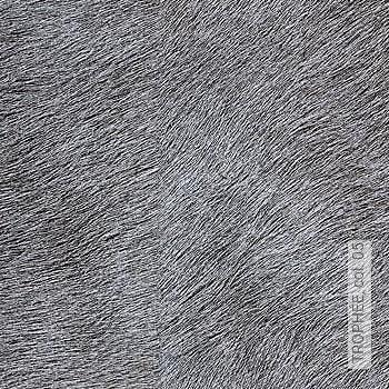 Price:95,20 EUR - Kollektion(en): - Fur