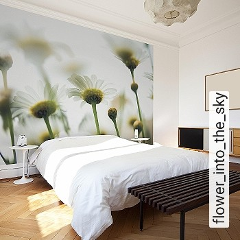 Preis:387,00 EUR - Kollektion(en): - Grüne Tapeten - FotoTapete - Gute Lichtbeständigkeit - Moderne Tapeten