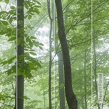 Preis:788,60 EUR - Kollektion(en): - Grüne Tapeten - FotoTapete