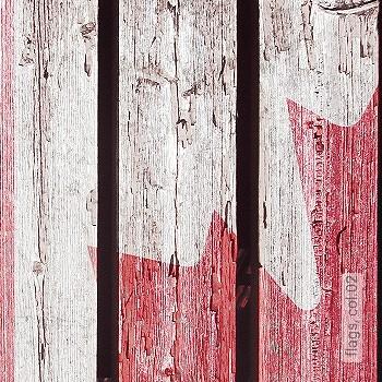 Preis:343,00 EUR - Kollektion(en): - Mit Acryl, Dispersion oder Latex überstreichbar - FotoTapete