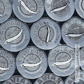 Preis:339,38 EUR - Kollektion(en): - Ornamente Tapeten - FotoTapete - Gute Lichtbeständigkeit - Schwarz