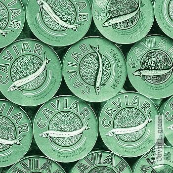 Preis:339,38 EUR - Kollektion(en): - Ornamente Tapeten