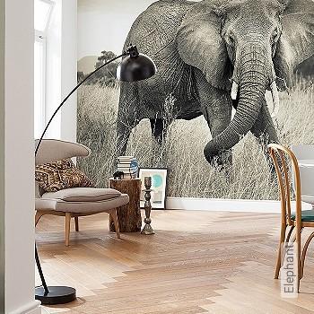 Preis:139,90 EUR - Kollektion(en): - Tapeten in Grau - FotoTapete