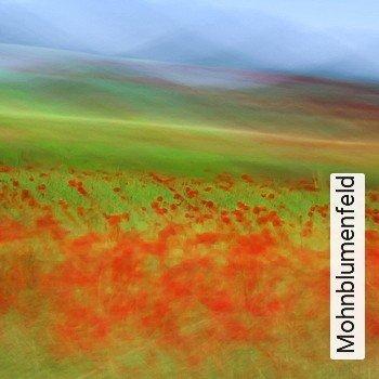 Mohnblumenfeld