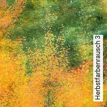 Herbstfarbenrausch 3