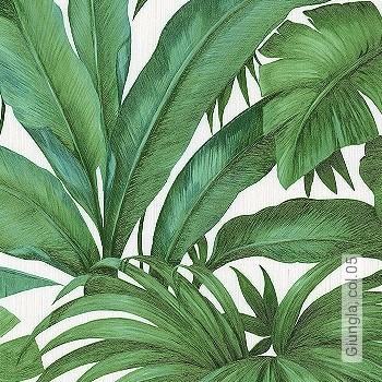 Preis:79,95 EUR - Kollektion(en): - Grüne Tapeten