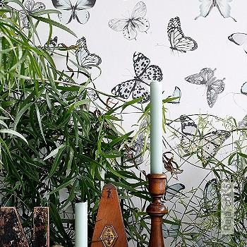 Preis:47,95 EUR - Kollektion(en): - Schmetterlinge