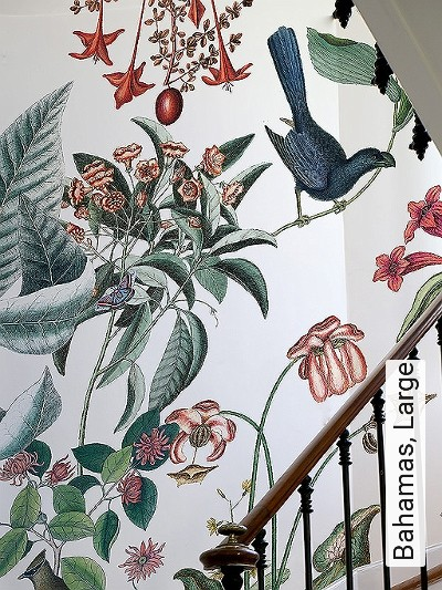 Bahamas,-Large-Tiere-Blätter-Vögel-Fauna-Florale-Muster-Moderne-Muster-FotoTapeten-Multicolor