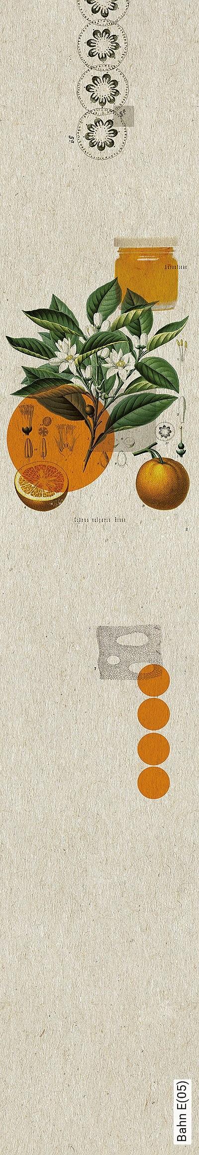 Bahn-E(05)-Früchte-Moderne-Muster-Orange-Creme