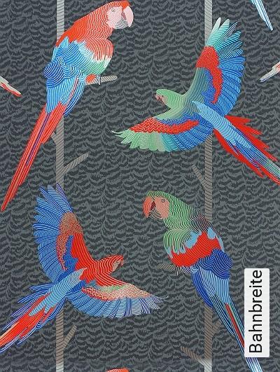 Basilius,-col.01-Vögel-Federn-Fauna-Rot-Blau-Silber-Anthrazit