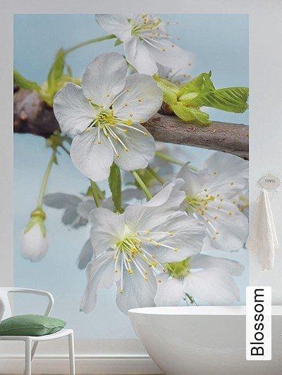 Blossom-Blumen-FotoTapeten-Grün-Braun-Weiß-mint