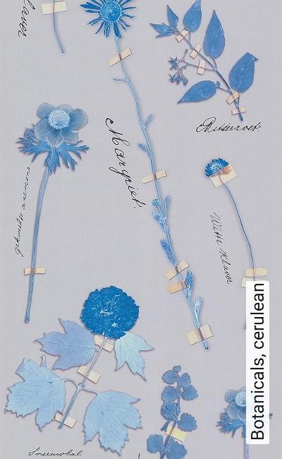 Botanicals,-cerulean-Blumen-Blätter-Florale-Muster-Blau-Grau-Gelb