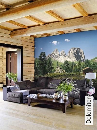 Dolomiten-Bäume-Landschaft-Gras-Wasser-Berge-FotoTapeten-Grün-Blau-Braun