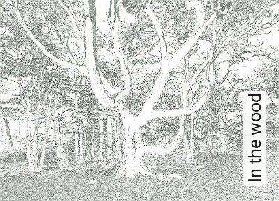 In-the-wood-Bäume-Blätter-Äste-FotoTapeten-Creme-Hellbraun