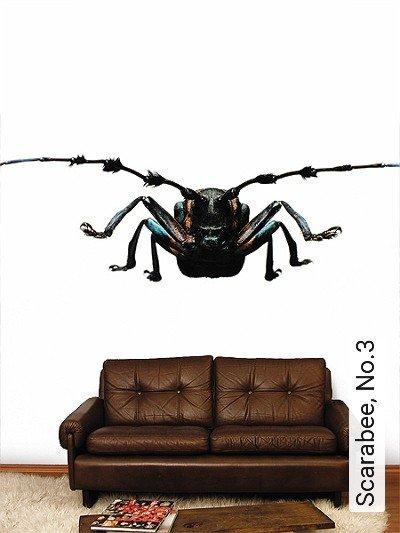 Scarabee,-No.3-Tiere-Fauna-FotoTapeten