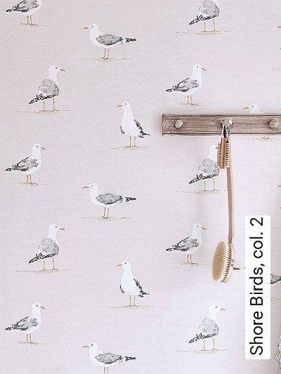 Shore-Birds,-col.-2-Tiere-Strand-Vögel-Fauna-Grau-Gelb-Rosa-Weiß
