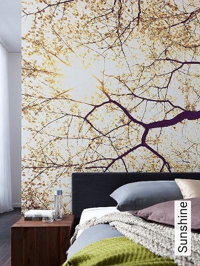 Sunshine-Bäume-Großmotiv-Schemen/Silhouetten-FotoTapeten-Lila-Gelb-Weiß