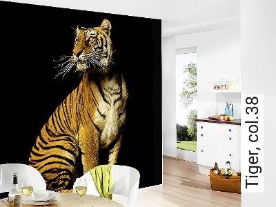 Tiger,-col.38-Tiere-FotoTapeten-Braun-Schwarz-Ocker