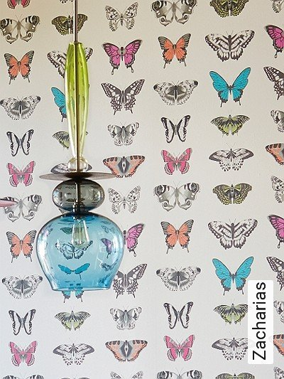 Zacharias-Schmetterlinge-Moderne-Muster-Anthrazit-Creme-Multicolor